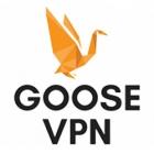 Bewertung von Goose VPN: Ist er auf der Höhe der Erwartungen?